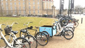 Copenhagen Bicycles